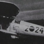 This photo of an He-51B shows a rudder that appears to be like that in the ICM kit.